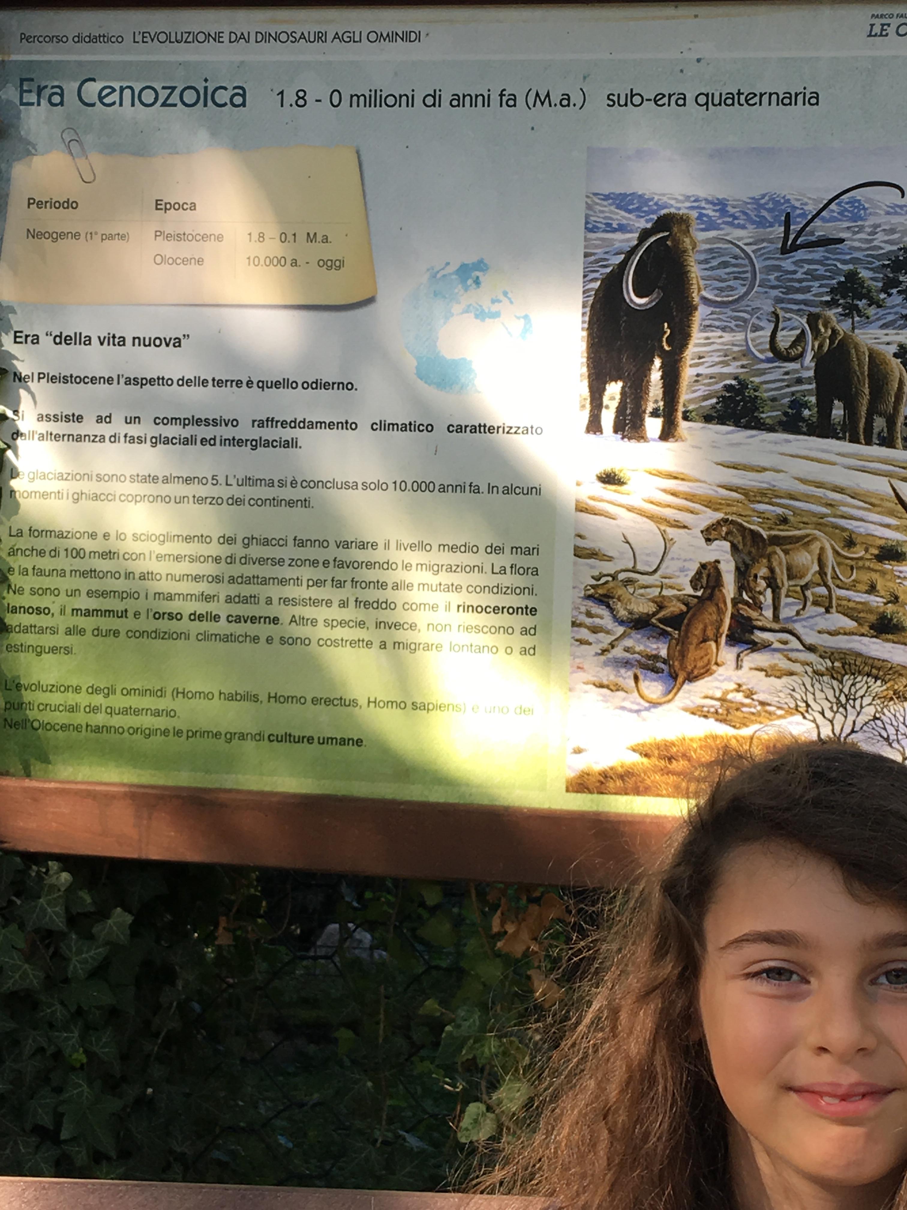 Studiare storia al Parco delle Cornelle