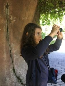 Studiare al Parco delle Cornelle